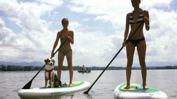 SUP Dog - Mensch mit Hund